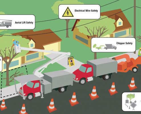 OSHA Tree Care Hazards